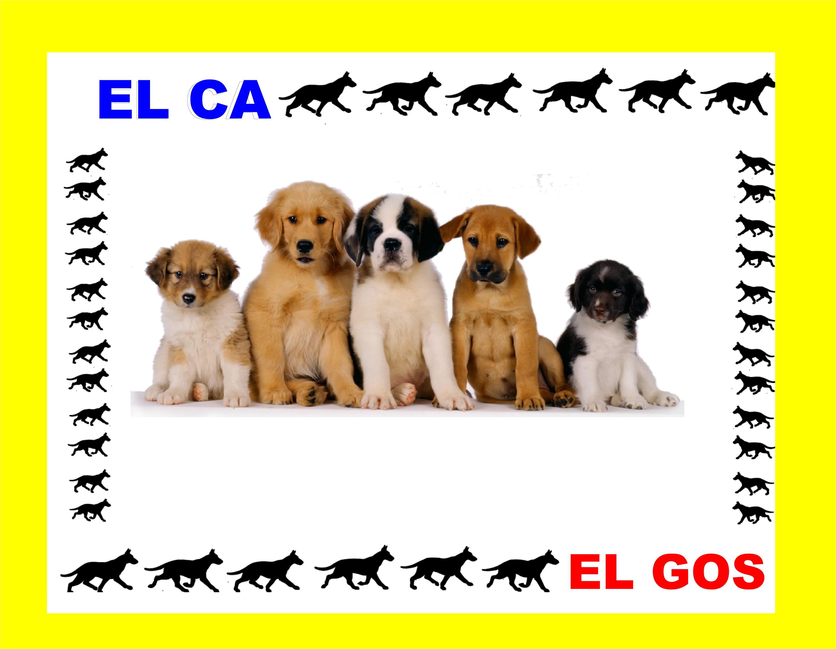 EL CA-EL GOS